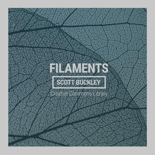 Filaments (CC-BY)