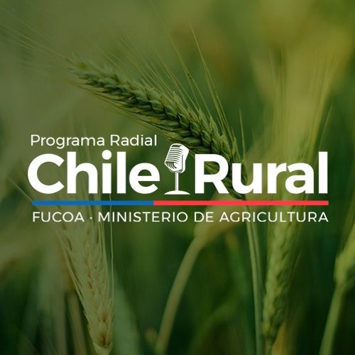 Chile Rural - Programa completo N° 44