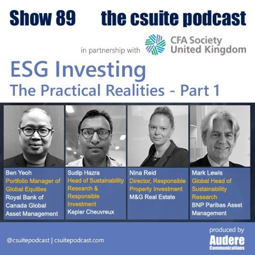 Show 89 - ESG Investing - The Practical Realities - Part 1