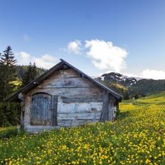 Les montagnes du Monténégro - où le tourisme rencontre la tradition