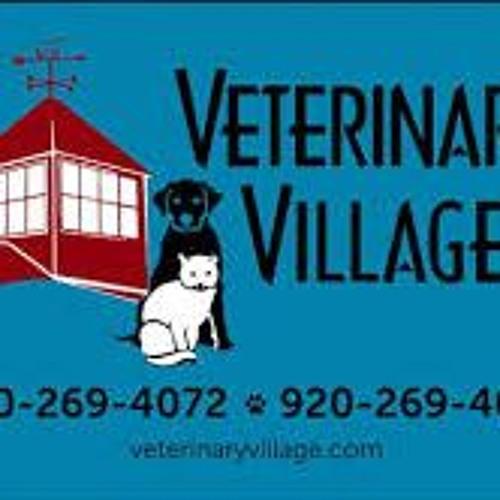 PET TALK TUESDAY WITH VET VILLAGE (11.5.19)