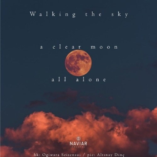naviarhaiku305: walking the sky