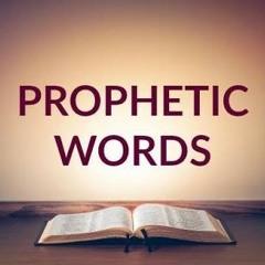 السماء ترسم حياتك - د. عماد حسني (كلمة نبوية - 7 نوفمبر 2019)