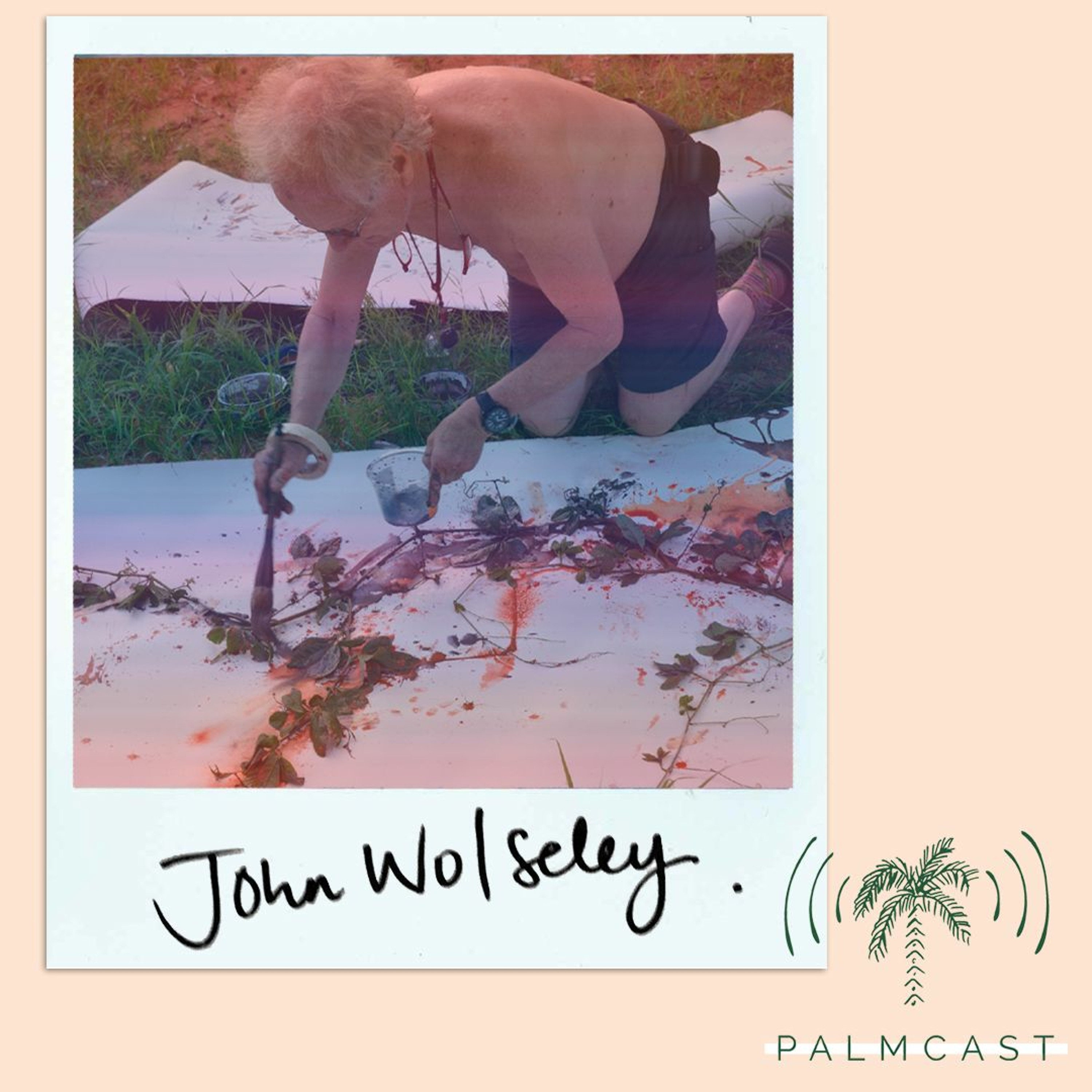John Wolseley — Seeing nature through art