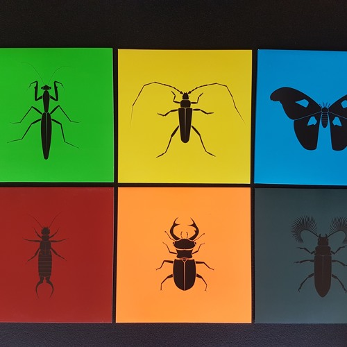 Insectum Art (serie of 6 releases) Which one do you have?