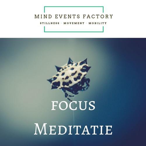 Focus Meditatie