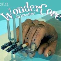 Wondercore Set 08.11