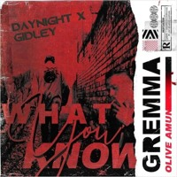 What You Know (GIDLEY & DayNight Remix) [FREE DOWNLOAD]
