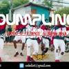 Download Remake   STYLO G FT SPICE & SEAN PAUL - DUMPLING Mp3