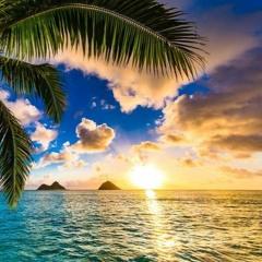 HAWAII DREAMS - KOI X Mrs.M