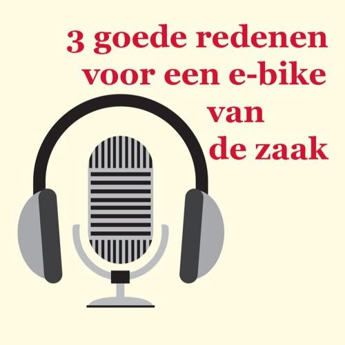E - Bike van de zaak
