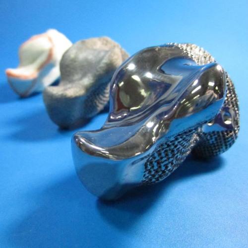 Podcast - Backcasting 3D printing in medicine
