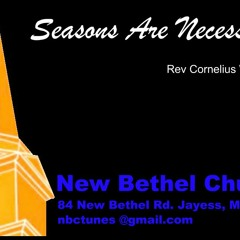 Rev Cornelius Williams - Seasons Are Necessary