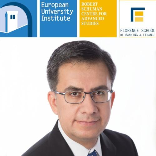 Evaluating financial regulation through nonlinear models - Enrique Mendoza