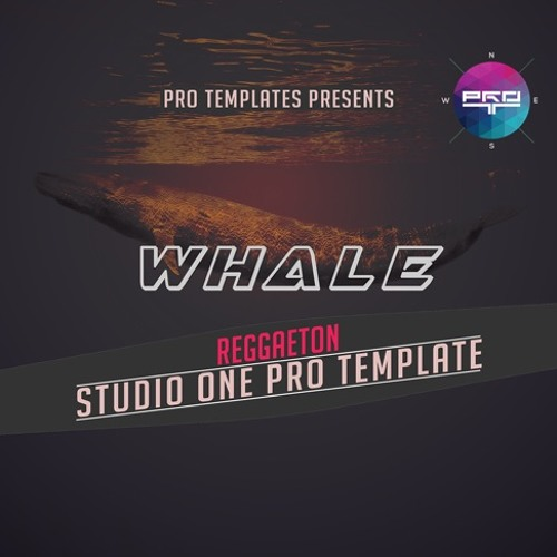 Whale Studio One Pro Template