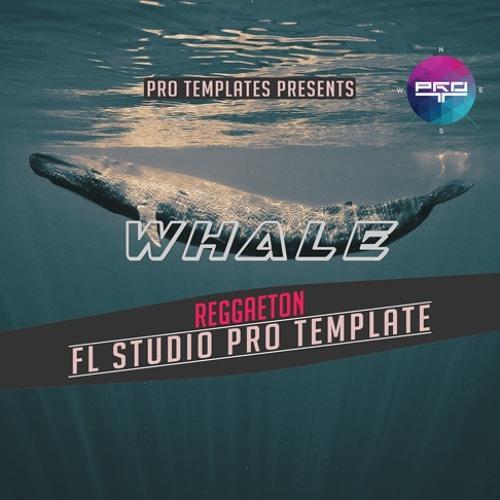 Whale FL Studio Pro Template