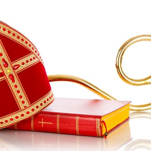 Intocht Sinterklaas Te Overasselt – Rieky Duighuisen