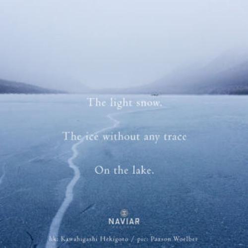 naviarhaiku306: the light snow