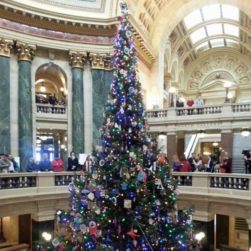 Assemblyman Jonathan Brostoff and Rep. Paul Tittl talk Wisconsin Christmas Tree legislation