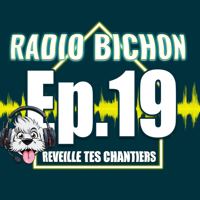 L'apprentissage dans le batiment Enregistré à Batimat 2019 RADIO BICHON