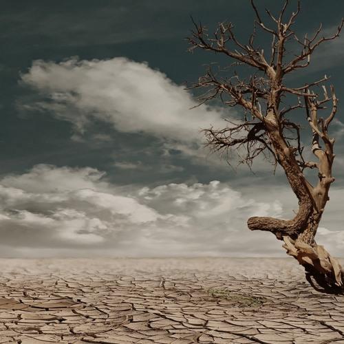 Human Rights @ De Krook: Klimaat en mensenrechten (14.11.2019)