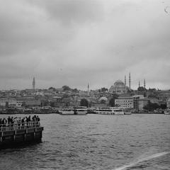 Istanbul cat city (dürum-dürum)