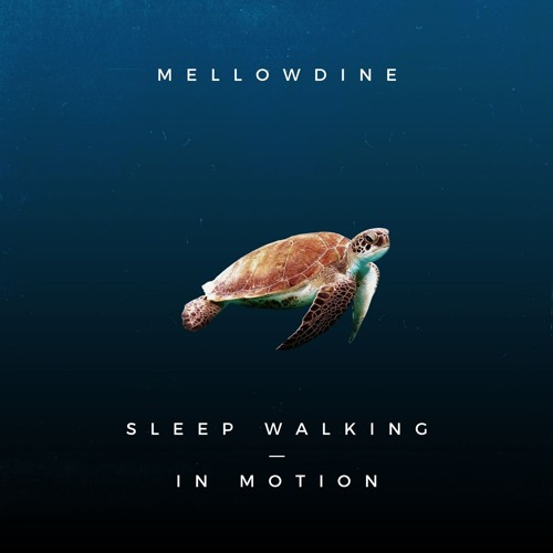 mellowdine - In Motion