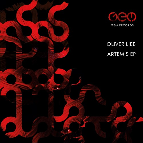 Oliver Lieb - Field Of View