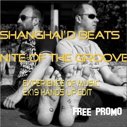 Shanghai'd Beats - Nite Of The Groove (Experience Of Music 2k19 Hands Up Edit) FREE PROMO