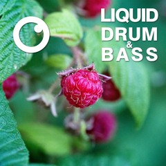 Liquid Drum and Bass Sessions  #13 : Dreazz [November 2019]