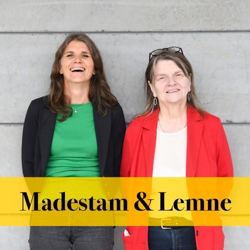 Madestam & Lemne: Riksdagsdirektören avslöjar allt