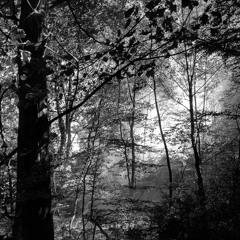 Timboletti - Glueck Im Gegenlicht(MiRET Remix)- Acker 068