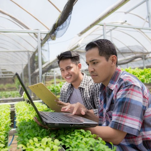 Programa El Reto De La Inclusión Digital En Zonas Rurales Noviembre 20 2019