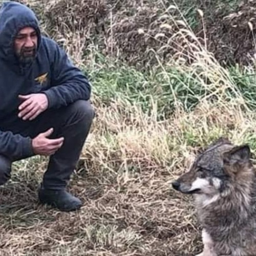 The Conspiracy Farm Ep. 112 Grey Wolves in Iowa with Bill Christman