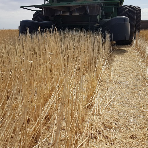 Stripper front and chaff deck system explainer and grain storage tips