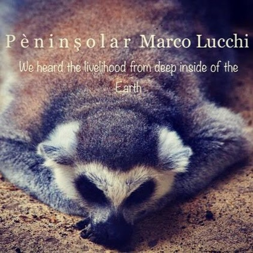 We Heard The Livelihood From Deep Inside Of The Earth - Marco Lucchi mix