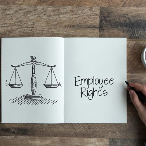 Taniya Lall Jimenez – Tips To Choose Real Estate Attorney