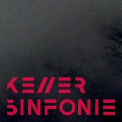 Kellersinfonie °21 - FRIDA DARKO
