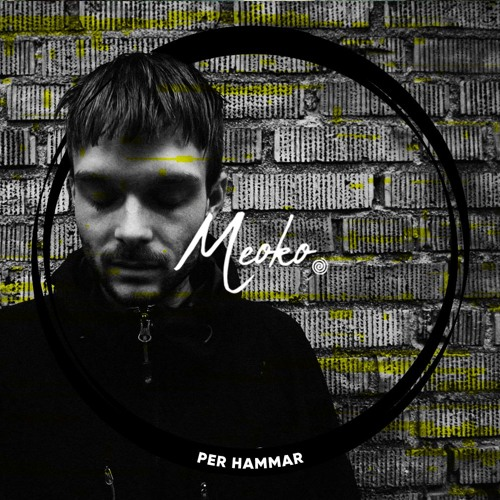 MEOKO Podcast Series | Per Hammar