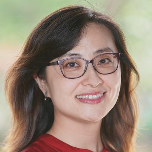 Dr. Jing Wang - Assistant Professor Of Interactive Media & Business At NYU Shanghai