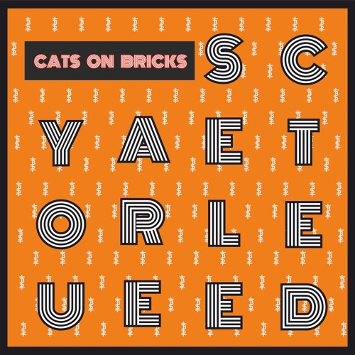 YOU ARE SELECTED #6 with Cats on Bricks