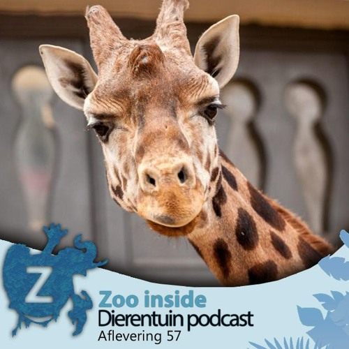 Zoo Inside - Aflevering 57