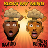 Download Davido - Blow My Mind Ft Chris Brown Instrumental [ReProd. Ludder B3ats] Mp3