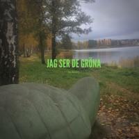 Jag Ser De Gröna (feat. Jonte, Benny & Eric <3) Artwork