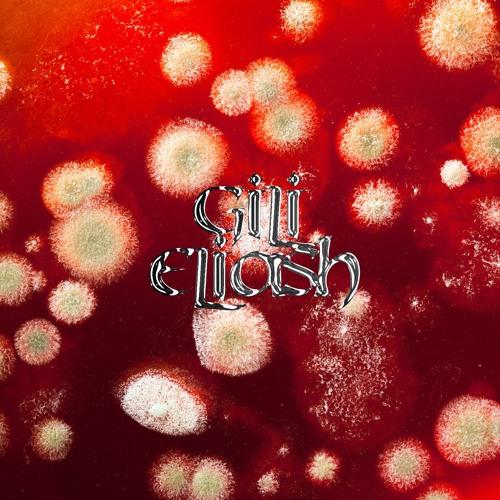 PAG030 — GILI ELIASH