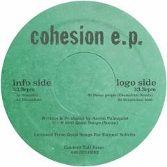 Eternal Schvitz 002: Aaron Palmquist - Cohesion EP