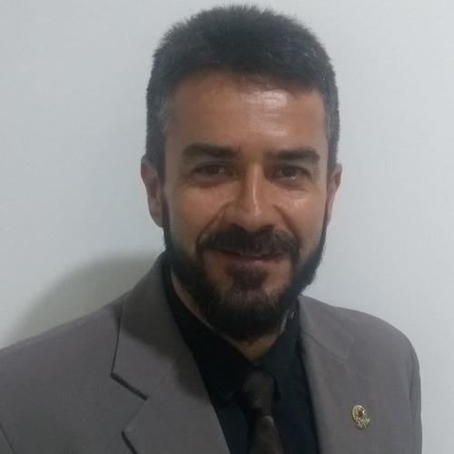 VER.NENÉM DE DIASSIS - DISCUSSÃO PLL 011 /2019