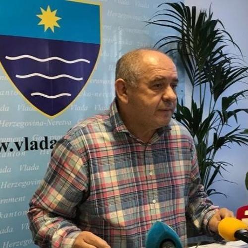Pero Pavlović  - O potresima