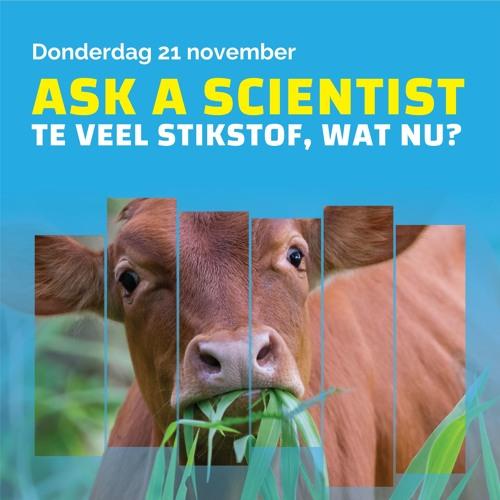 Ask a Scientist: te veel stikstof, wat nu?