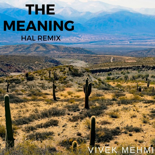 The Meaning - Hal Remix